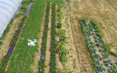 Flanders Make ontwikkelt vliegende robots voor de logistiek en landbouw